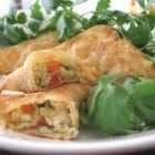 Crispy Southwest Chicken Wontons