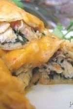 Fiesta Chicken and Spinach Enchiladas