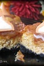 Black Bottomed Mini Caramel Pumpkin Cheesecake Bites