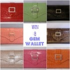 Mother's Day Celebration Giveaway.....Gem Wallet!