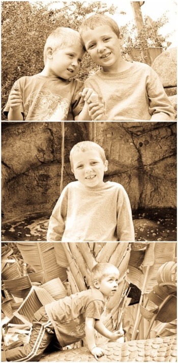 A Collage of Sepia Photos of my Sons