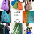 $40 Giftcard Giveaway…ecoSilk Bags by the Bag Ladies of Seattle!