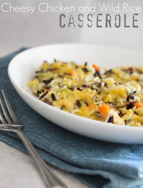 Cheesy Chicken and Wild Rice Casserole - Picky Palate