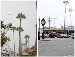 Newport Beach Shops