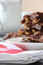 Chocolate, Peanut Butter and Marshmallow Pudding Cookies