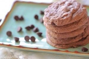 Brownie Batter Chocolate Chip Cookies 104sm