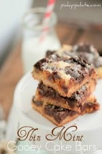Girl Scout CookieThin Mint Gooey Cake Bars