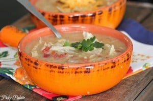 Slow Cooker Chicken Enchilada Soup 5