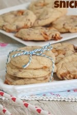 Snicker-Doodles {literally}