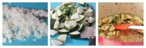 onion mixture