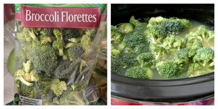 broccoli in crock pot