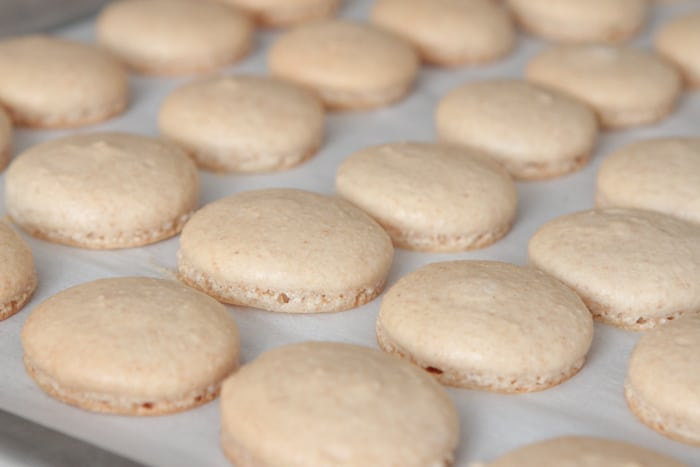 Cinnamon Toast Crunch Macarons-14