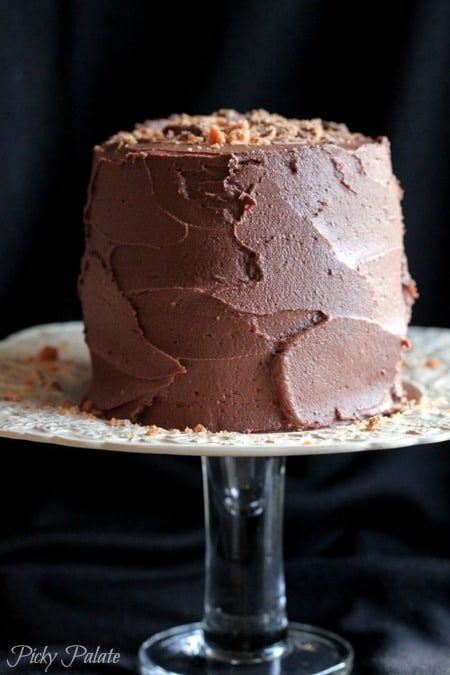 Double Chocolate Butterfinger Layered Cake-26t