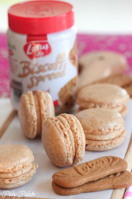 Biscoff Macarons-22t