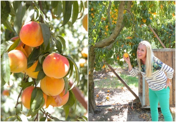 Peaches and Jenn