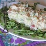 Skinny Greek Yogurt Chicken Salad