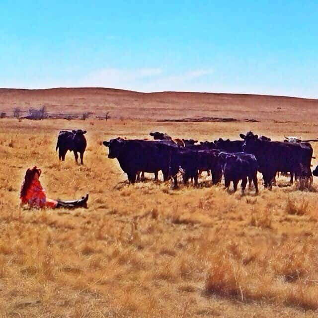 The Pioneer Woman Ranch