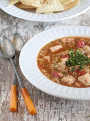 Zesty Spanish Rice Chicken Soup