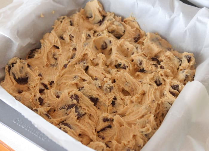 Vanilla Malted Chocolate Chip Cookie Bars-12