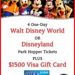 Disney Park Hopper Tickets and Visa Gift Card Giveaway