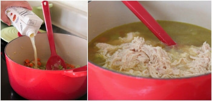 One Pot Mexican Style Chicken Noodle Soup