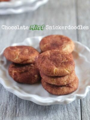 Chocolate Mint Snickerdoodles