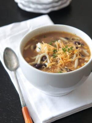 Mexican Style Chicken Noodle Soup