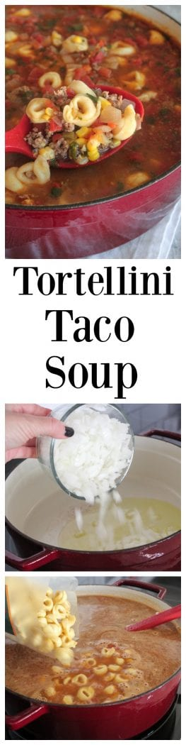 1 Tortellini Taco Soup