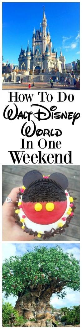 How To Do Walt Disney World in One Weekend