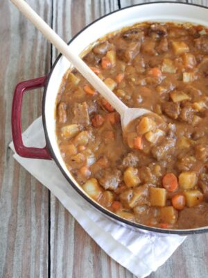 Mexican Style Beef Stew