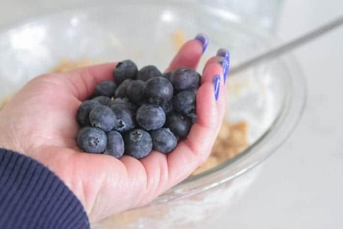 Greek Yogurt Whole Wheat Blueberry Muffins