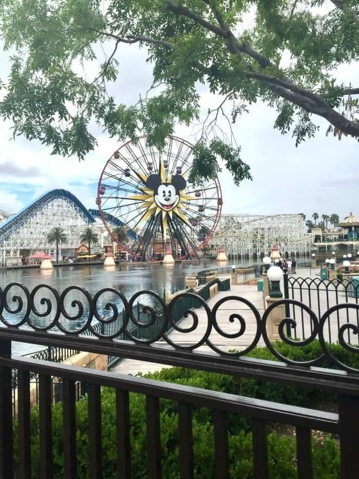 Disney California Adventure's The Cove Bar