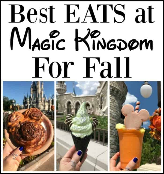 Best Eats at Magic Kingdom For Fall