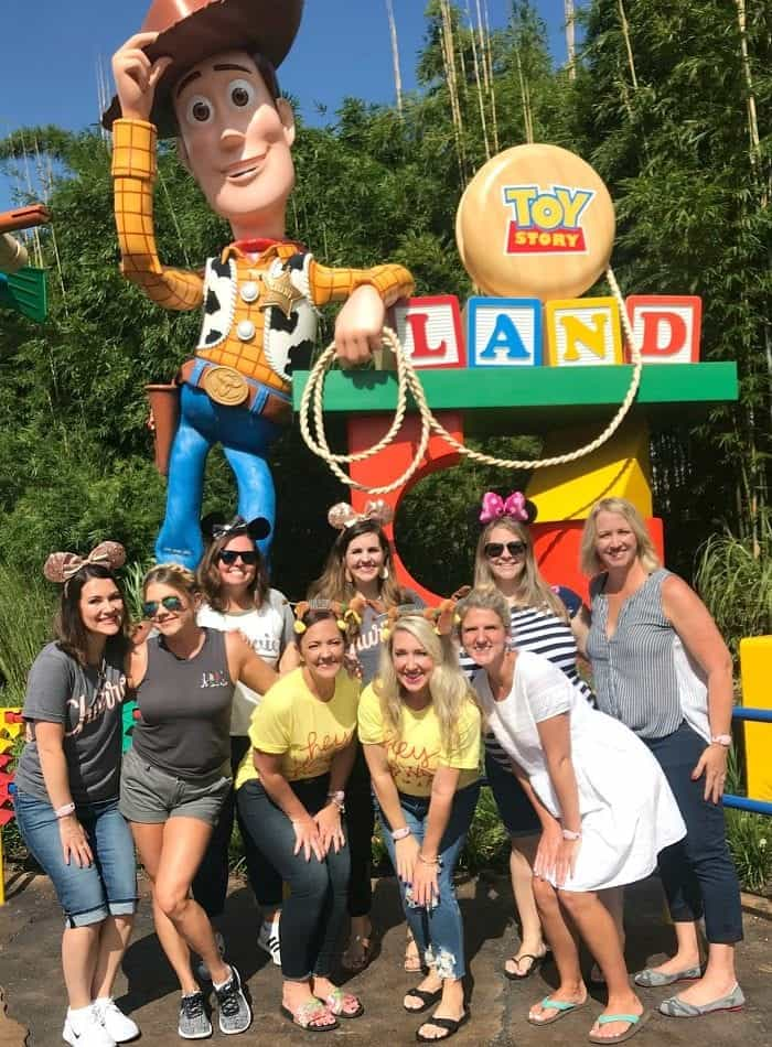 Where Is Toy Story Land