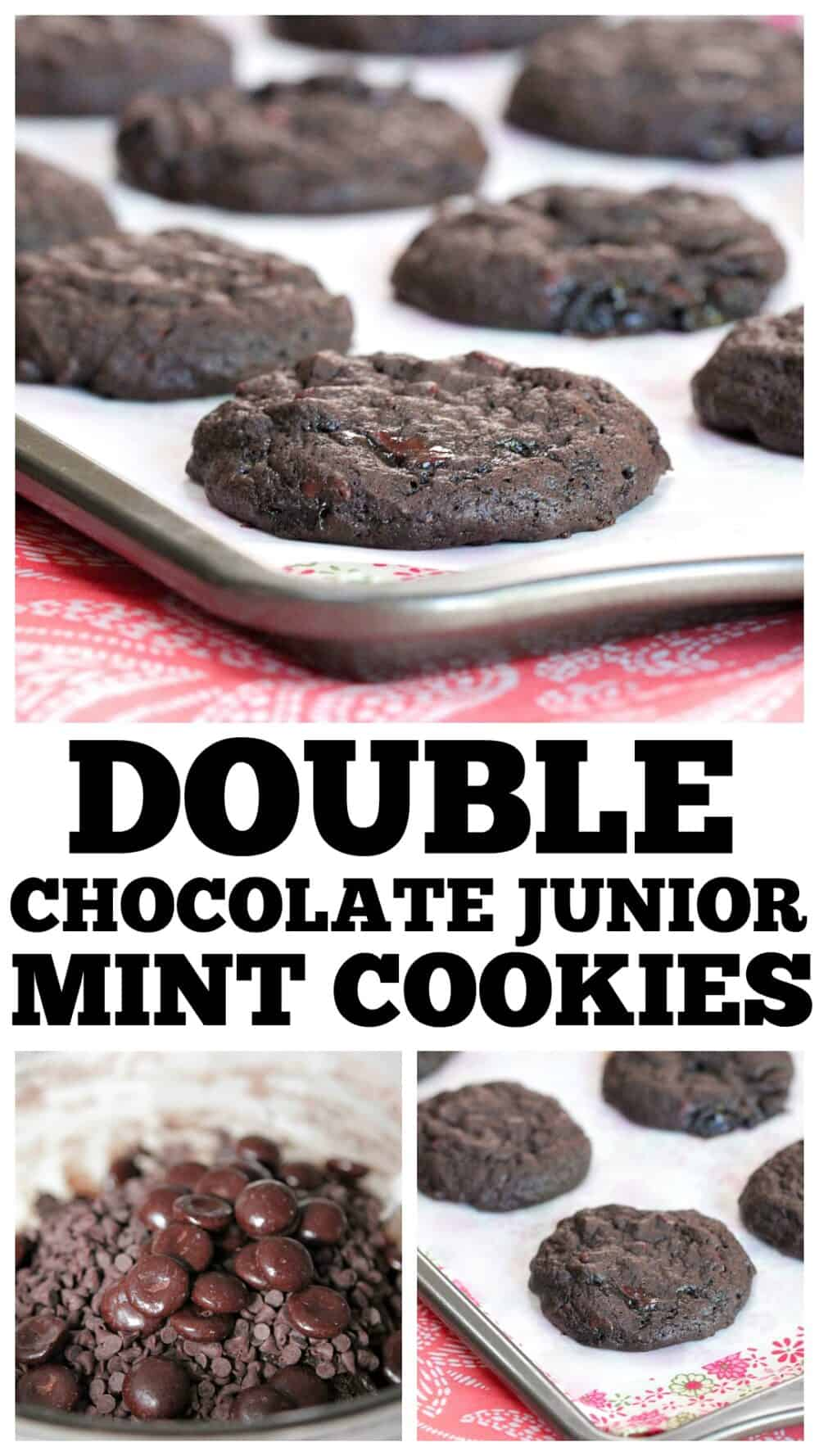 photo collage junior mint chocolate cookie recipe