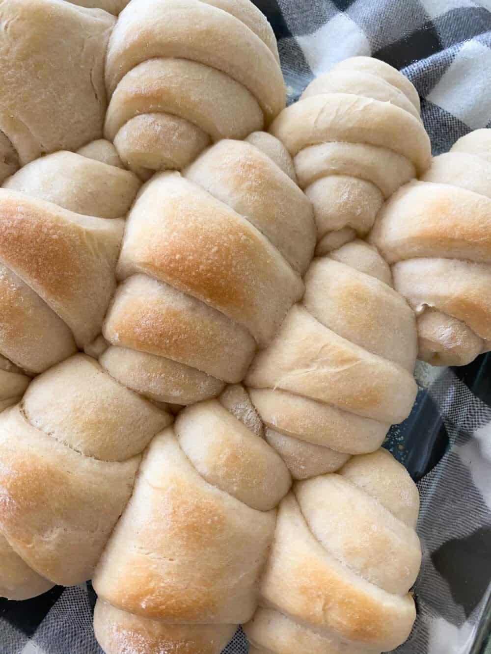 baked dinner rolls